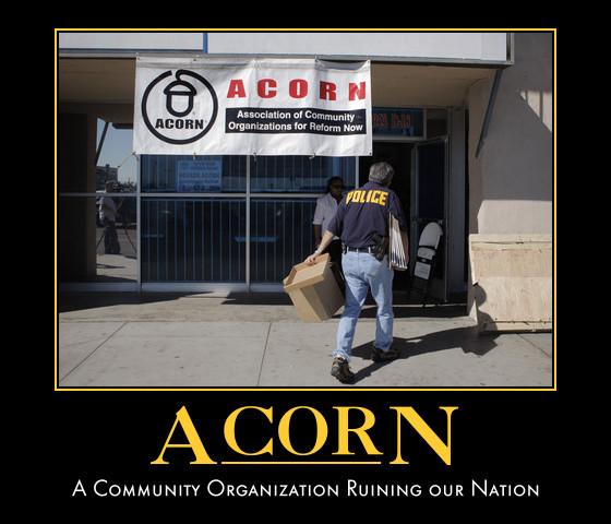 acorn-vote-2
