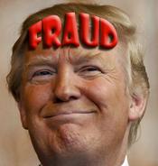 trumpfraud2