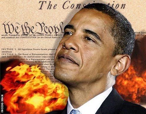 ObamaBurningCons