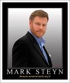 steyn poster
