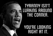 obama tyranny irs2