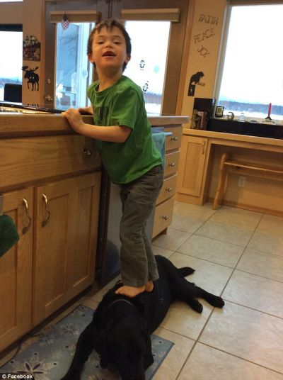 trig-standing-on-dog