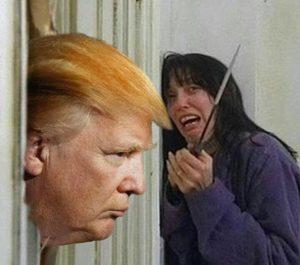 TrumpShining
