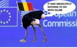37930-ostrich