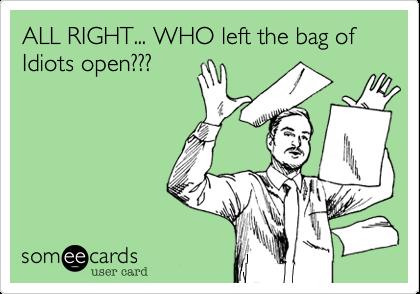 bag of idiots 2