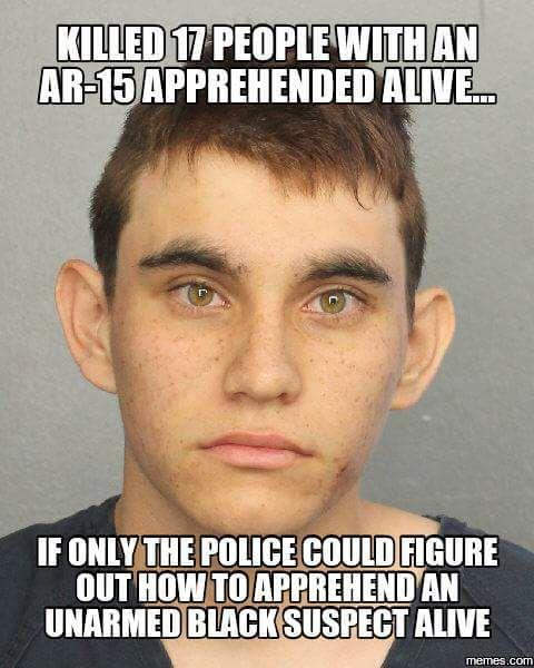 Top Idiotic Anti Gun Memes From Last Month