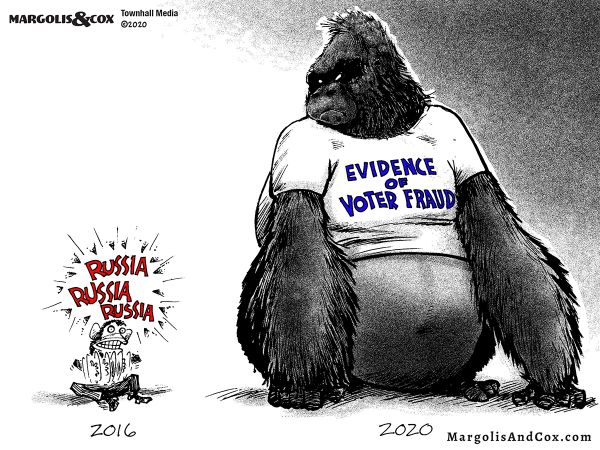 MC-gorilla-in-the-room_web20201113010037