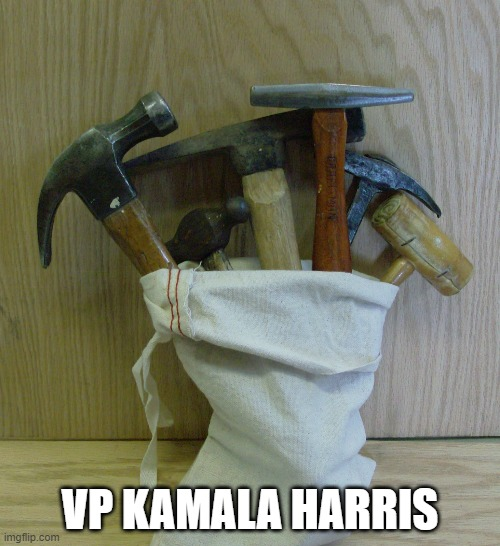 The bag of hammers who is our Vice President